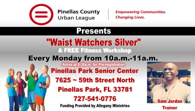 Waist Watchers Silver